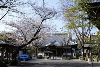 成願寺の写真
