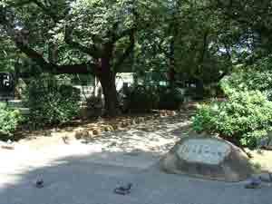 新井薬師公園入口付近